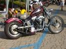 5° Biker Laghèe Fest 29/30 maggio 2010